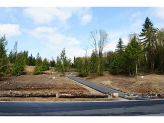 """Photo 2: 31989 KENNEY Avenue in Mission: Mission BC Land for sale in """"SPORTS PARK"""" : MLS®# F1436725"""