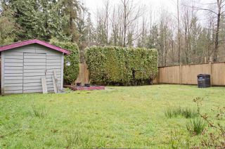 Photo 19: 2324 STAFFORD Avenue in Port Coquitlam: Mary Hill House for sale : MLS®# R2234789