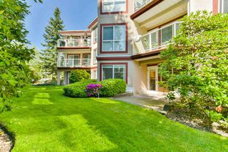 """Photo 18: 102 15342 20 Avenue in Surrey: King George Corridor Condo for sale in """"Sterling Place"""" (South Surrey White Rock)  : MLS®# R2269750"""
