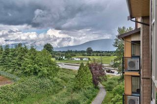 "Photo 19: 412 12635 190A Street in Pitt Meadows: Mid Meadows Condo for sale in ""CEDAR DOWNS"" : MLS®# R2278406"