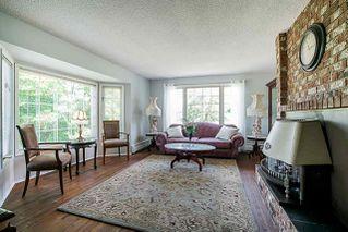 Photo 21: 10470 125 Street in Surrey: Cedar Hills House for sale (North Surrey)  : MLS®# R2281855