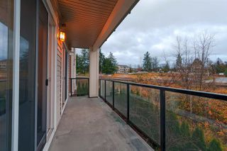 """Photo 17: 207 11580 223 Street in Maple Ridge: West Central Condo for sale in """"RIVERS EDGE"""" : MLS®# R2325382"""