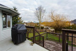 Photo 10: 8848 212A Street in Langley: Walnut Grove House for sale : MLS®# R2333206
