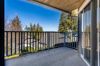 """Photo 17: 37 21848 50 Avenue in Langley: Murrayville Townhouse for sale in """"Cedar Crest"""" : MLS®# R2350873"""