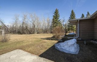 Photo 27: 20 50416 RGE RD 245: Rural Leduc County House for sale : MLS®# E4151538