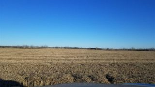 Photo 5: 4;23;47;1;SW RR 231A: Rural Wetaskiwin County Rural Land/Vacant Lot for sale : MLS®# E4152054