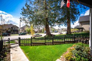 """Photo 3: 17 14555 68 Avenue in Surrey: East Newton Townhouse for sale in """"SYNC"""" : MLS®# R2359622"""