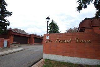 Photo 28: 24 500 LESSARD Drive in Edmonton: Zone 20 Townhouse for sale : MLS®# E4155694