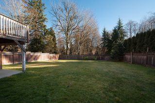 Photo 26:  in Surrey: Home for sale : MLS®# F1403509