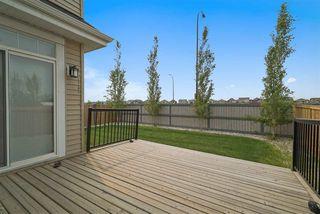 Photo 10: 8979 24 Avenue in Edmonton: Zone 53 House for sale : MLS®# E4163440
