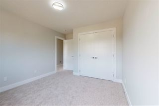 Photo 23:  in Edmonton: Zone 17 House for sale : MLS®# E4165582