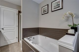 Photo 33: 462 WILLIAMSTOWN Green NW: Airdrie Detached for sale : MLS®# C4264468