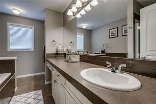 Photo 31: 462 WILLIAMSTOWN Green NW: Airdrie Detached for sale : MLS®# C4264468