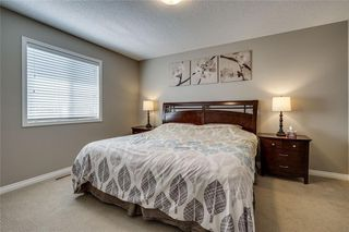 Photo 28: 462 WILLIAMSTOWN Green NW: Airdrie Detached for sale : MLS®# C4264468