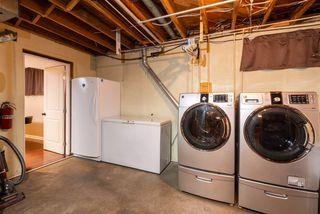 Photo 19: 10313 165 Street in Edmonton: Zone 21 House for sale : MLS®# E4172810
