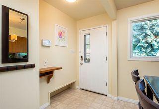Photo 20: 10313 165 Street in Edmonton: Zone 21 House for sale : MLS®# E4172810