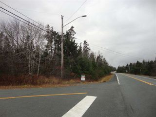 Photo 4: 19 Balcombes Road in Bayside: 40-Timberlea, Prospect, St. Margaret`S Bay Vacant Land for sale (Halifax-Dartmouth)  : MLS®# 202023468