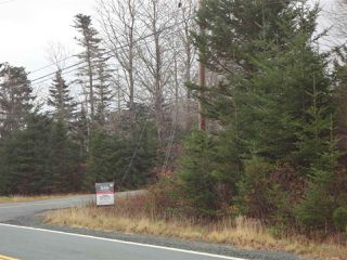 Photo 5: 19 Balcombes Road in Bayside: 40-Timberlea, Prospect, St. Margaret`S Bay Vacant Land for sale (Halifax-Dartmouth)  : MLS®# 202023468