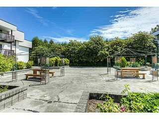 Photo 12: 204 12170 222ND Street in Maple Ridge: West Central Condo for sale : MLS®# V1131313