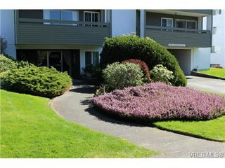 Photo 7: 203 429 Linden Ave in VICTORIA: Vi Fairfield West Condo for sale (Victoria)  : MLS®# 727710