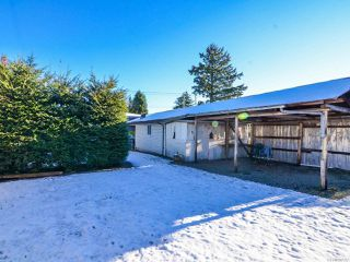 Photo 53: 800 Alder St in CAMPBELL RIVER: CR Campbell River Central House for sale (Campbell River)  : MLS®# 747357