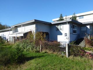 Photo 44: 800 Alder St in CAMPBELL RIVER: CR Campbell River Central House for sale (Campbell River)  : MLS®# 747357
