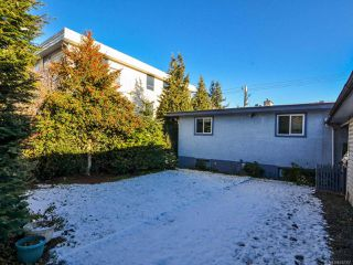 Photo 49: 800 Alder St in CAMPBELL RIVER: CR Campbell River Central House for sale (Campbell River)  : MLS®# 747357