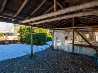 Photo 56: 800 Alder St in CAMPBELL RIVER: CR Campbell River Central House for sale (Campbell River)  : MLS®# 747357