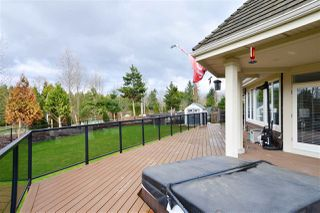 "Photo 19: 3148 162 Street in Surrey: Grandview Surrey House for sale in ""Morgan Acres"" (South Surrey White Rock)  : MLS®# R2204831"