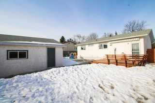 Photo 19: Gorgeous 3 Bedroom bungalow for sale in Mission Gardens