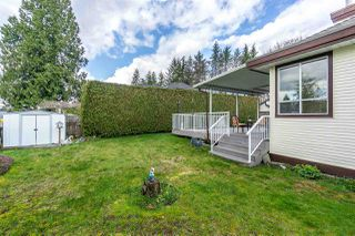 Photo 17: 23571 108 AVENUE in Maple Ridge: Albion House for sale : MLS®# R2253210