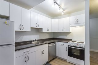 Photo 8: 113 1209 HOWIE Avenue in Coquitlam: Central Coquitlam Condo for sale : MLS®# R2284980