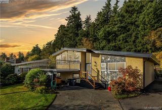 Photo 1: 4282 Parkside Cres in VICTORIA: SE Mt Doug Single Family Detached for sale (Saanich East)  : MLS®# 799976