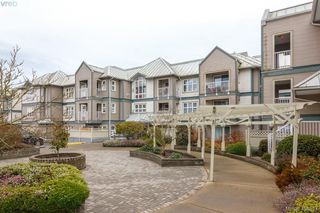 Photo 20: 210 3008 Washington Ave in VICTORIA: Vi Burnside Condo Apartment for sale (Victoria)  : MLS®# 804493