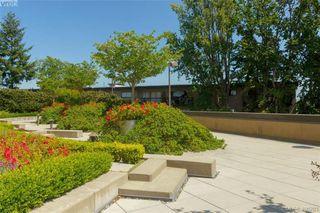 Photo 17: 307 103 E Gorge Rd in VICTORIA: Vi Burnside Condo Apartment for sale (Victoria)  : MLS®# 807413
