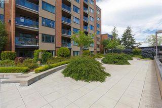 Photo 20: 307 103 E Gorge Rd in VICTORIA: Vi Burnside Condo Apartment for sale (Victoria)  : MLS®# 807413
