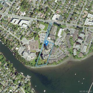 Photo 26: 307 103 E Gorge Rd in VICTORIA: Vi Burnside Condo Apartment for sale (Victoria)  : MLS®# 807413