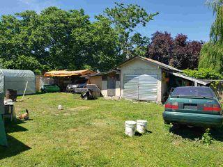 Photo 6: 12667 115 Avenue in Surrey: Bridgeview House for sale (North Surrey)  : MLS®# R2379882