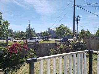 Photo 4: 12667 115 Avenue in Surrey: Bridgeview House for sale (North Surrey)  : MLS®# R2379882