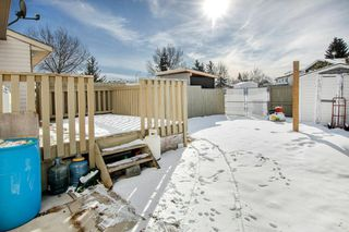 Photo 26: 29 FALBURY Crescent NE in Calgary: Falconridge Semi Detached for sale : MLS®# C4288390