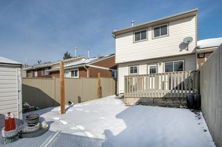 Photo 27: 29 FALBURY Crescent NE in Calgary: Falconridge Semi Detached for sale : MLS®# C4288390