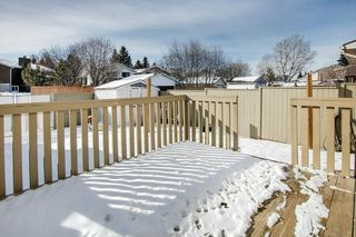 Photo 28: 29 FALBURY Crescent NE in Calgary: Falconridge Semi Detached for sale : MLS®# C4288390