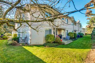 """Photo 20: 52 19060 FORD Road in Pitt Meadows: Central Meadows Townhouse for sale in """"REGENCY COURT"""" : MLS®# R2445894"""