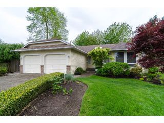 Photo 1: 6447 129A Street in Surrey: West Newton House for sale : MLS®# F1411408