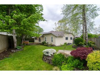 Photo 18: 6447 129A Street in Surrey: West Newton House for sale : MLS®# F1411408