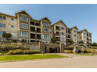 "Photo 1: 421 19673 MEADOW GARDENS Way in Pitt Meadows: North Meadows PI Condo for sale in ""THE FAIRWAYS"" : MLS®# R2014157"