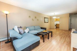 "Photo 8: 312 316 CEDAR Street in New Westminster: Sapperton Condo for sale in ""Regal Manor"" : MLS®# R2132749"