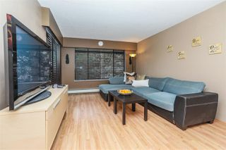"Photo 1: 312 316 CEDAR Street in New Westminster: Sapperton Condo for sale in ""Regal Manor"" : MLS®# R2132749"