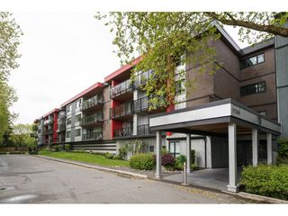 "Photo 2: 204 11240 DANIELS Road in Richmond: East Cambie Condo for sale in ""Daniels Manor"" : MLS®# R2167434"