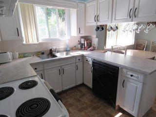 Photo 4: 5532 46 Avenue in Delta: Delta Manor House for sale (Ladner)  : MLS®# R2186671
